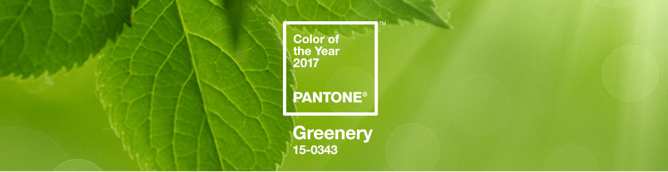 PANTONE COLOR OF THE YEAR 2017 - Greenery 15-0343