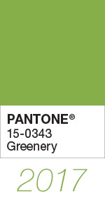 Pantone Color of the Year 2017 Greenery 15-0343