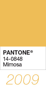 Pantone Color of the Year 2009 Mimosa 14-0848